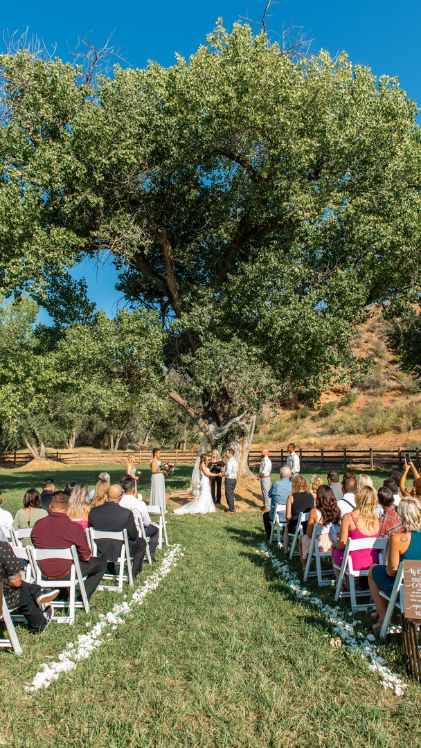 August Zion Red Rock Wedding.jpg