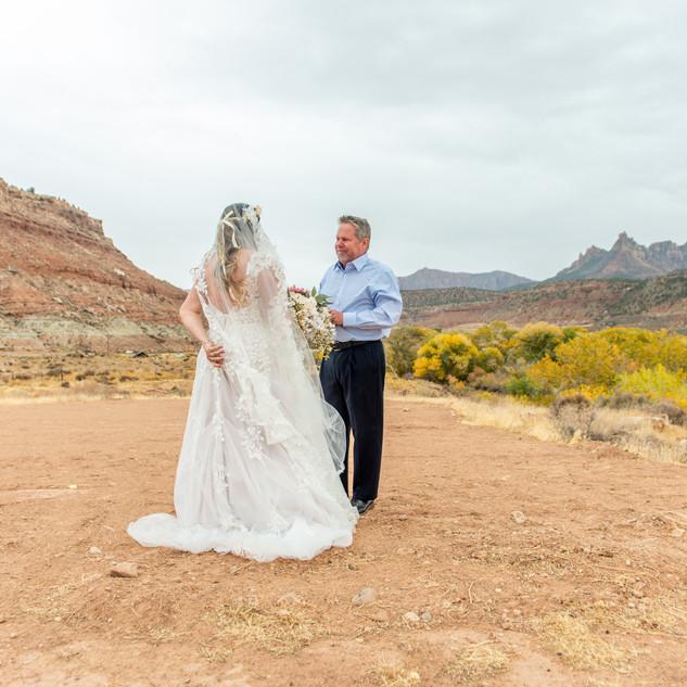 zion national park wedding.jpg