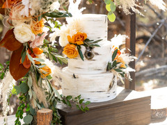 utah wedding cake.jpg