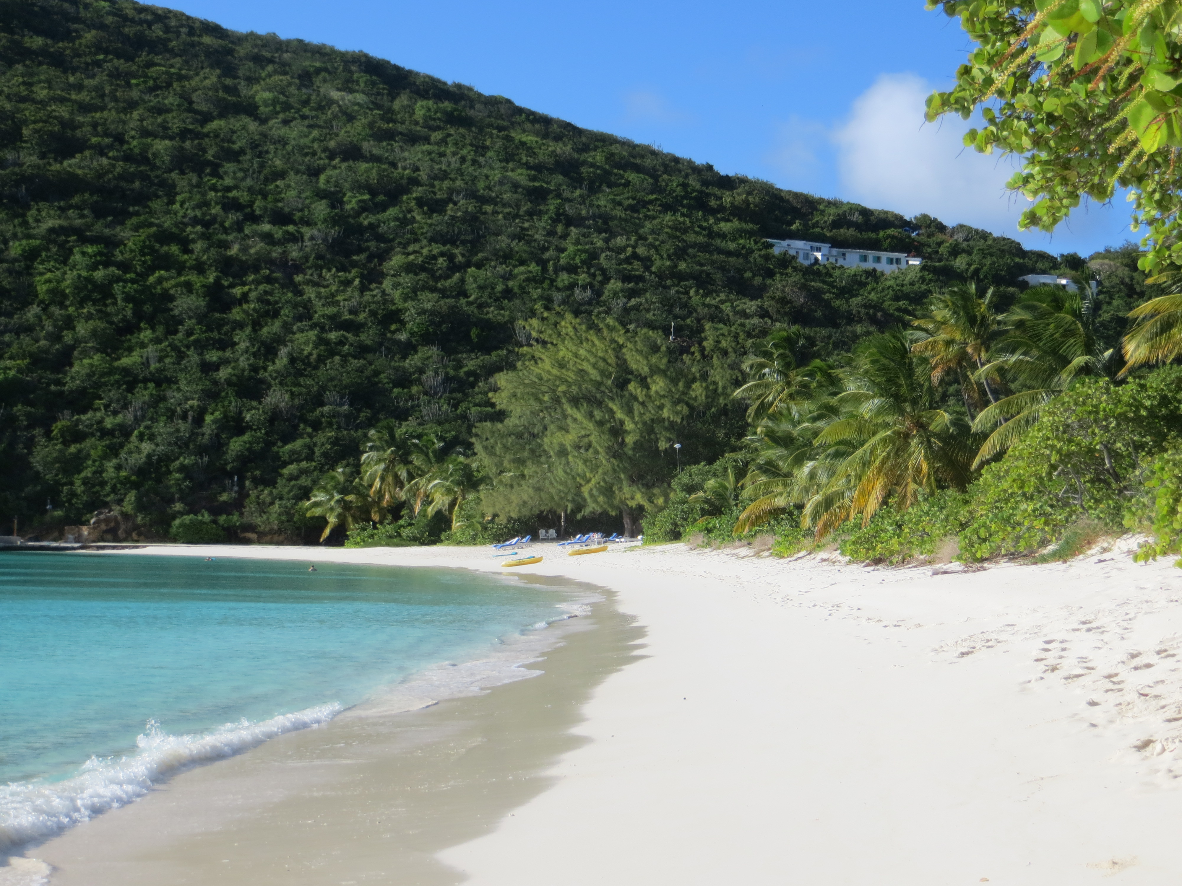 Guana Island- White Bay