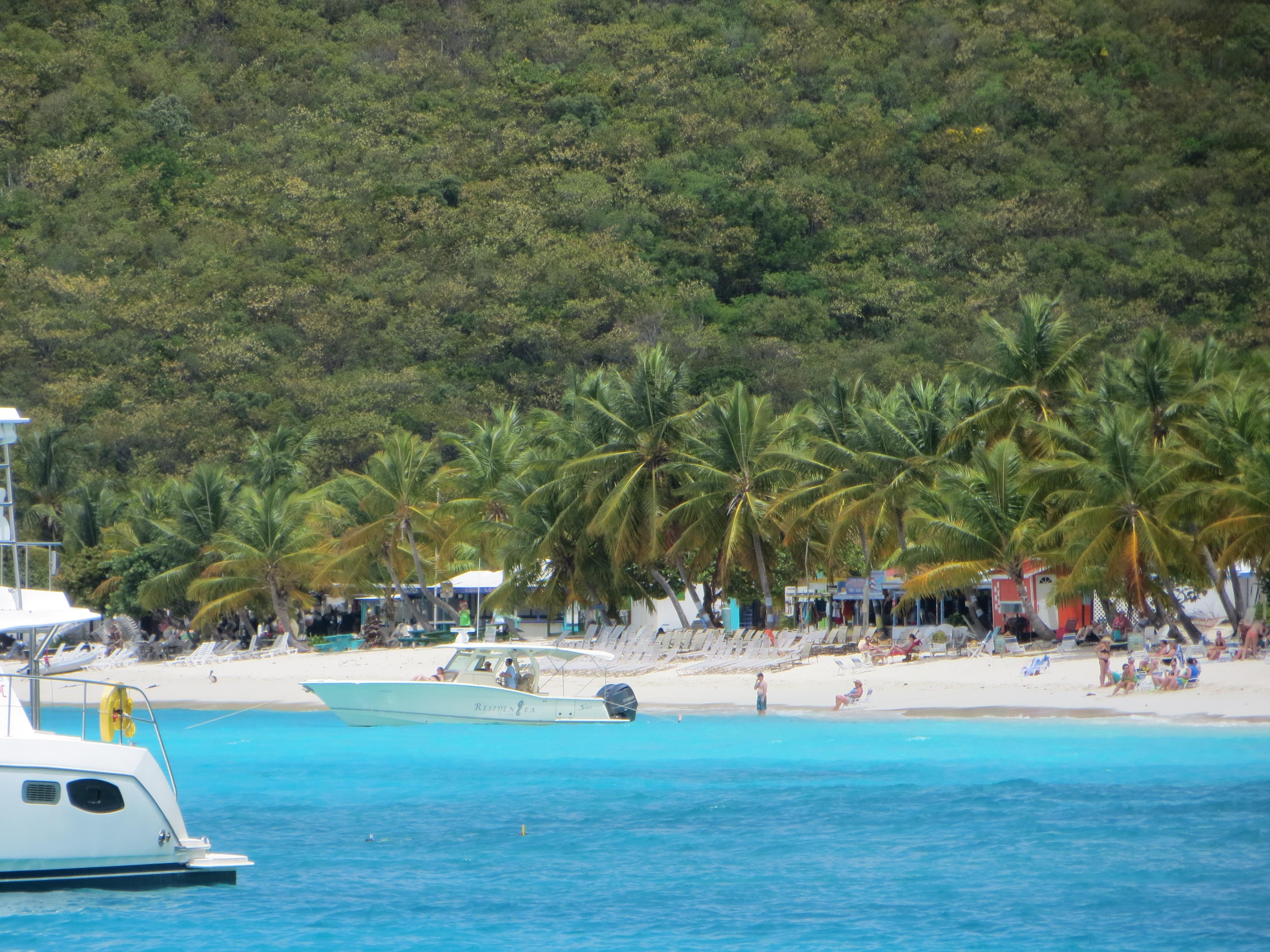 White Bay JVD