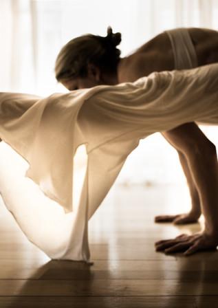 Art_of_Yoga-23.jpg