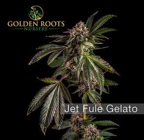Jet_Fule_Gelato(Logo).jpg