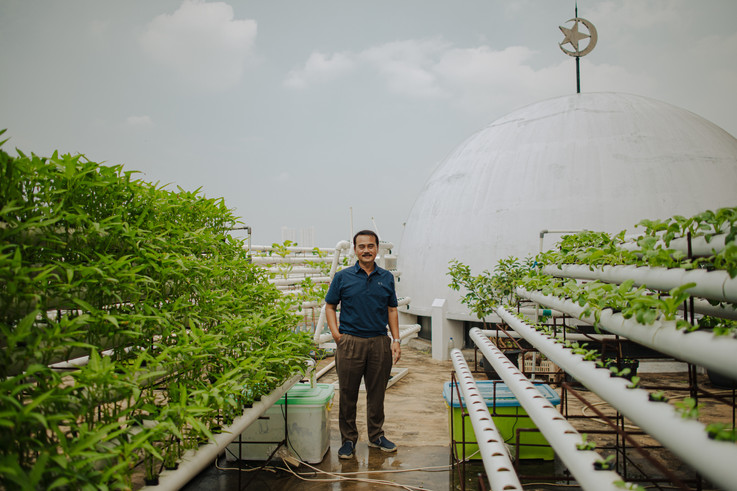 Hydroponic Gardening on The Mosque's Rooftop