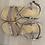 Thumbnail: Sandalo Once cipria