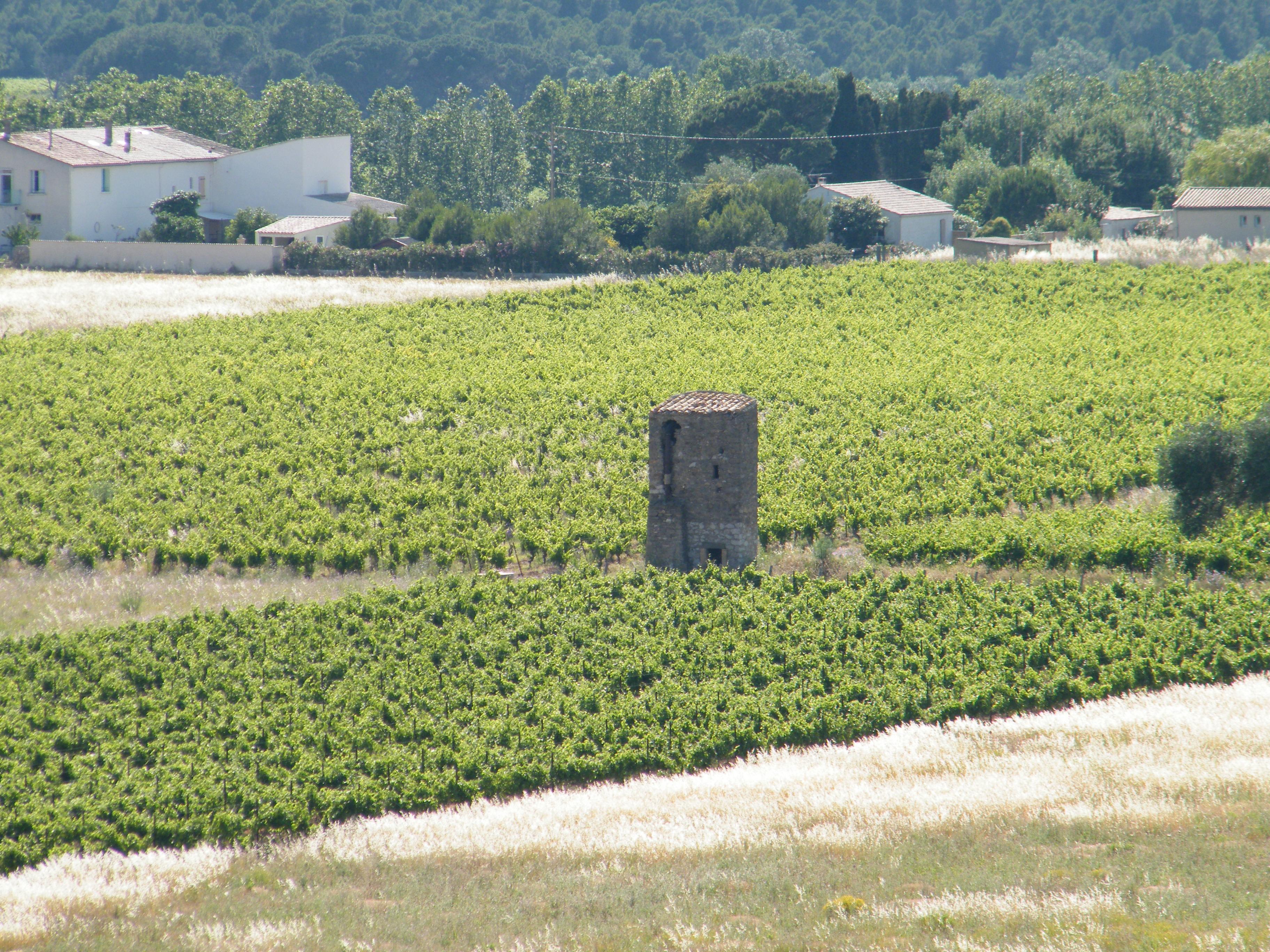 La tour d'irrigation