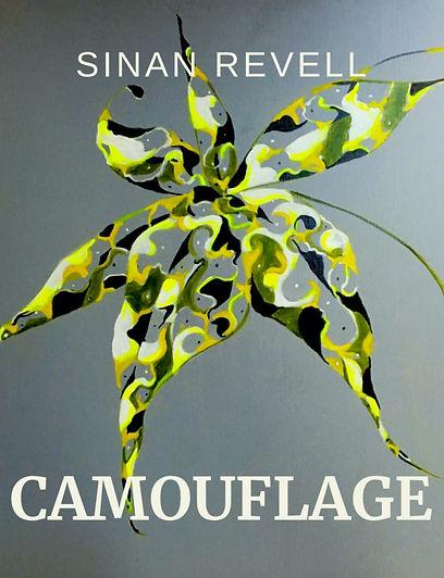 Camouflage_Met.JPG