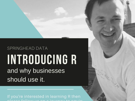 Introducing R and why businesses should use this tool.