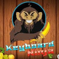 Keyboard Ninja.jpg