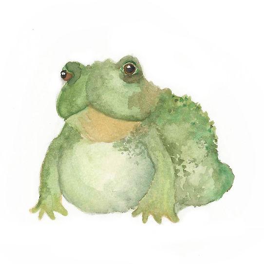 frogboi.jpg