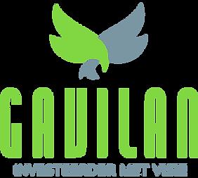 gavilan-inv-logo.20161128235245.png