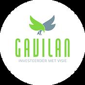 GAVILAN.png