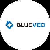 BlueVeo.png
