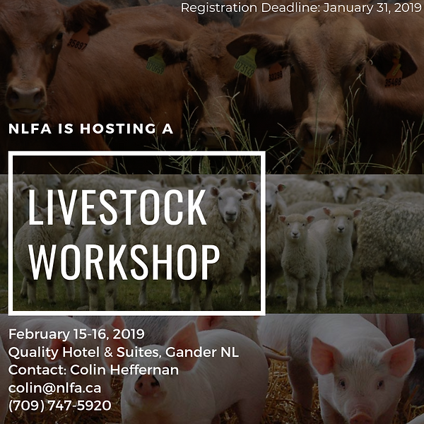 Livestock33.png