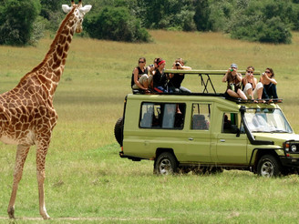 Safari Lodges Fully Booked From June 2021 Through December 2021 As Kenya Opens To Tourists
