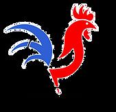 Logo Spike Coq 3.png