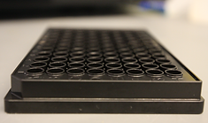 HTS plate screening James lab