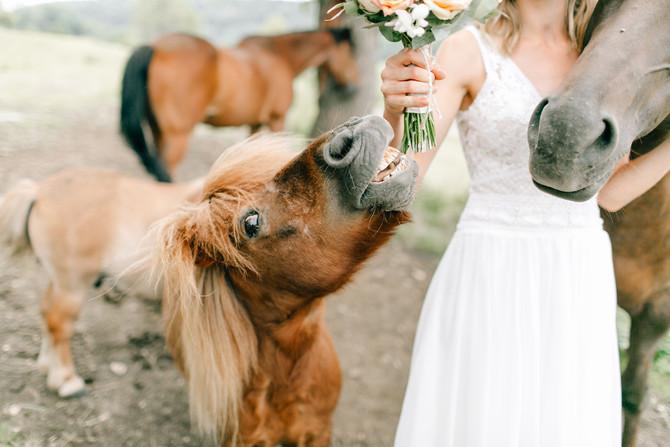 Hochzeit auf dem Hofgut Uhenfels in Bad Urach