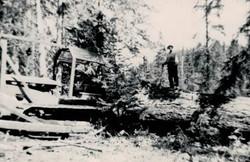 Herb Lym Logging wood edited