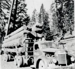 Herb Lym Logging edit