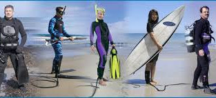 Shark Shield: the latest and possibly greatest innovation in shark determent