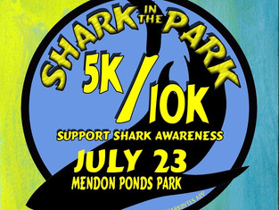 Shark in the Park 2017!