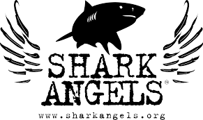 Shark Angels: Doing Their Part to Love and Protect Sharks and Our World