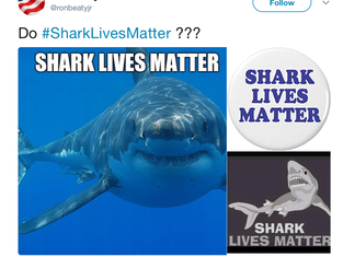 Shark Lives Do Matter, Mr. Beaty
