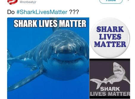 Shark Lives Do Matter, Mr. Beaty