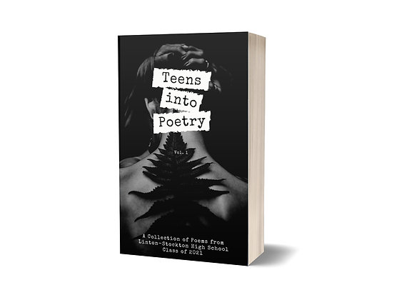 Teens into Poetry Collection