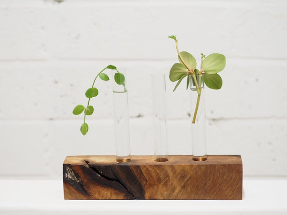 3 Tube Propagation Unit - Walnut