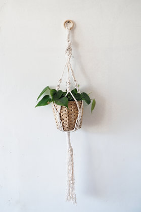 Small Macrame Hanger with plant