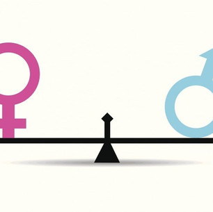Gender Equity Committee Update and Proposed Constitutional Amendment