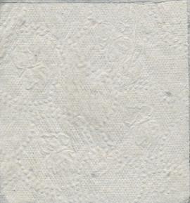 Arugula Seeds in Toilet Paper
