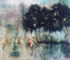 breckland trees.jpg