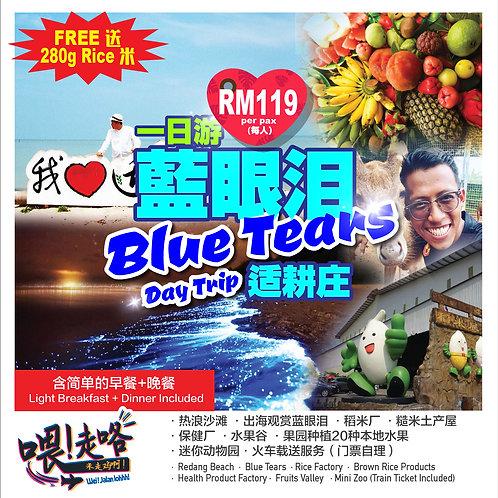 蓝眼泪适耕庄 [Blue Tears, Sekinchan]