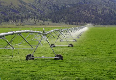 Energy and Water Savings