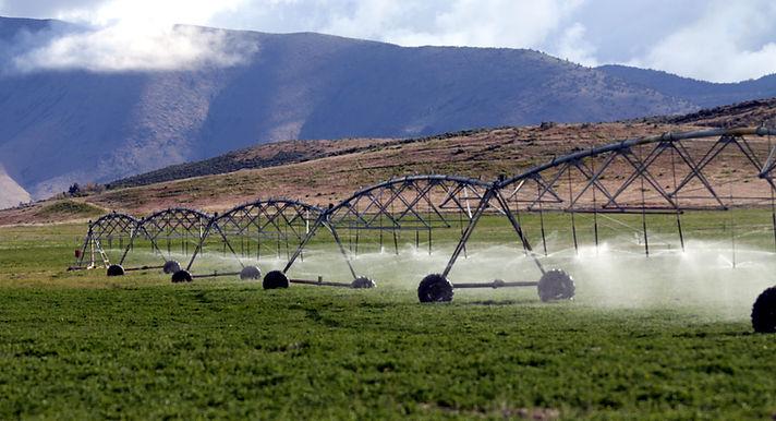 Irrigation Sprinkler in a field.jpg