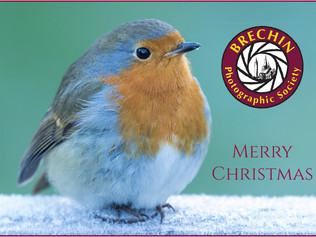 Merry Christmas from BPS