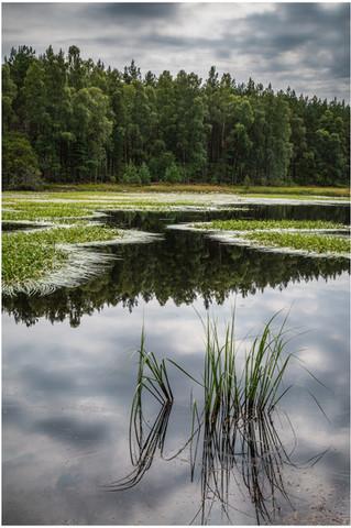 Cormech Loch