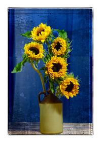 Sun Flowers (after Van Gogh) - Pat Ness
