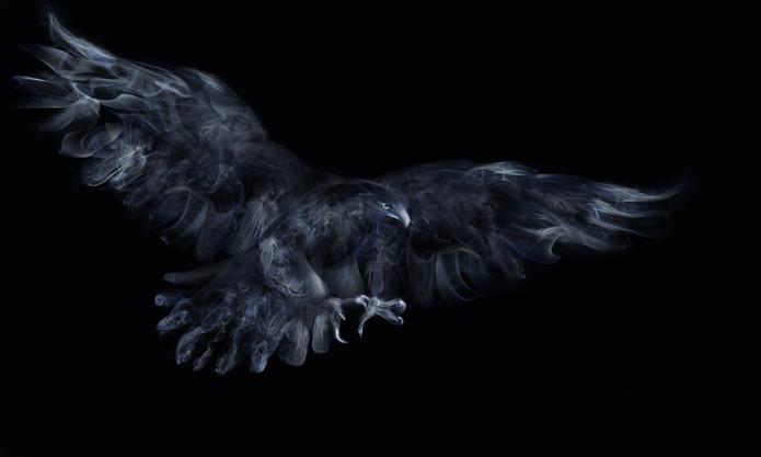 Smoke Eagle