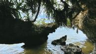 Hidden Path to Secret Beach