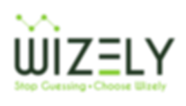 wizely_logo_transparent.png