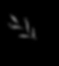 זרי קסם רינת [Recovered]-05.png