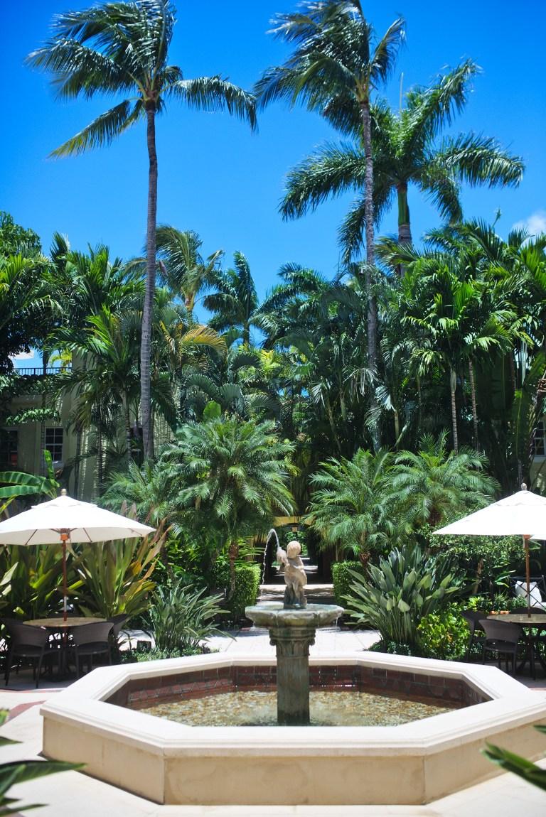cuppajyo-sf-travel-fashion-lifestylle-blogger-westpalmbeach-beachstyle-resortstyle-resortwear-thebra