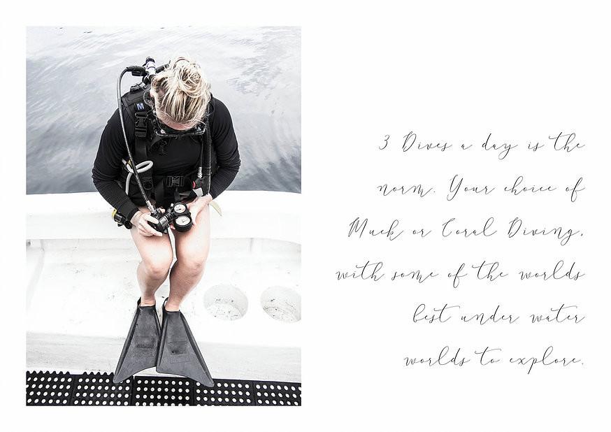 Travel Blog Lembeh Strait Diving