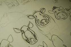 Boar Research 07