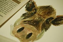 Boar Research 03