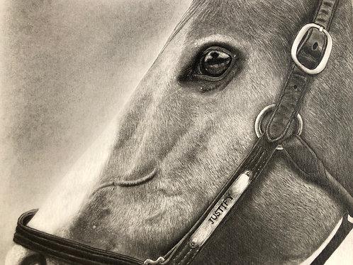 Justify Horse